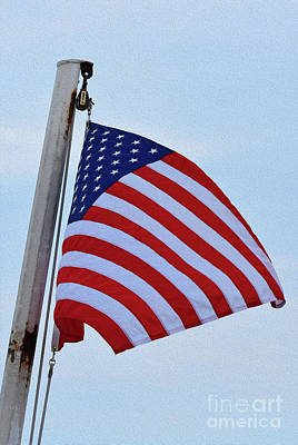 Photograph - Painted Us Flag by Skip Willits