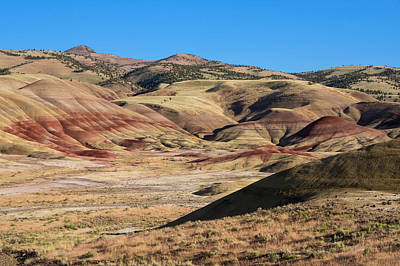 Photograph - Painted Valley  by Steven Clark