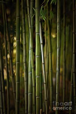 Painting - Painting Of A Bamboo Grove IIi by George Atsametakis