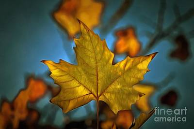 Painting - Painting Of Autumn Leaf by George Atsametakis