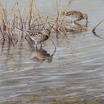 Painting - Pair Of Snipe By Alan M Hunt by Alan M Hunt