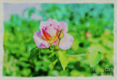 Photograph - Pale Pink Watercolor Rose by Marina Usmanskaya