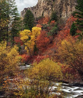 Photograph - Palisades Creek Canyon by Leland D Howard