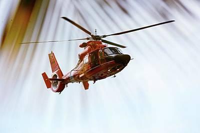 Photograph - Palm Chopper by Climate Change VI - Sales