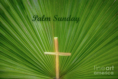 Photograph - Palm Sunday by Dale Powell