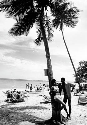Photograph - Palm Tree by Afro Newspaper/gado