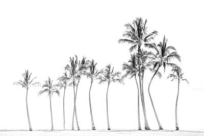 Digital Art - Palm Tree Horizon In Black And White by Ramona Murdock
