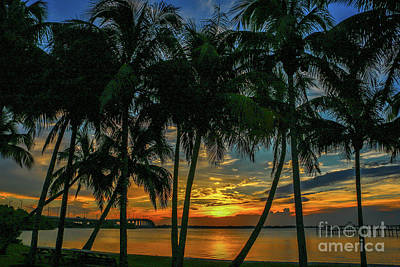 Palm Tree Lagoon Sunrise Art Print