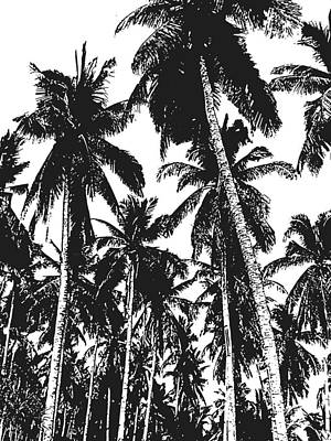 Digital Art - Palm Trees In Black And White by Nigel Sutherland