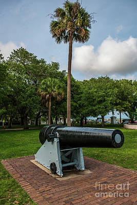 Photograph - Palmetto State Defense by Dale Powell