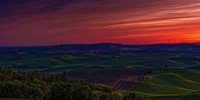 Photograph - Palouse 8 by Thomas Hall