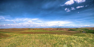 Photograph - Palouse Hills In Spring by David Patterson