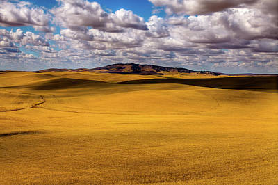 Photograph - Palouse Shadows by David Patterson
