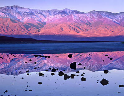 Photograph - Panamint Range Reflected In Standing by Tim Fitzharris/ Minden Pictures