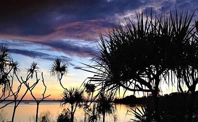 Landscape Wall Art - Photograph - Pandanus Sunset by Joan Stratton