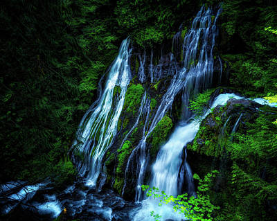 Photograph - Panther Creek Falls by Thomas Hall