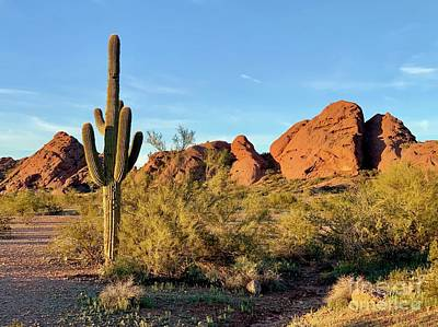 Photograph - Papago Butte by Sean Griffin