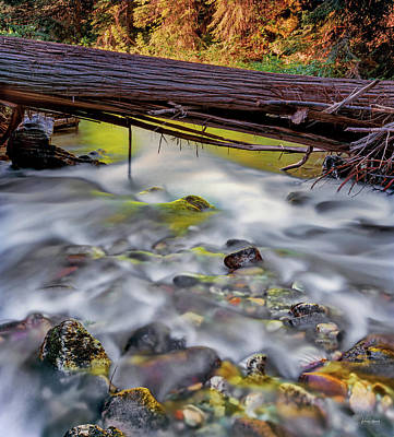 Photograph - Papoose Creek by Leland D Howard