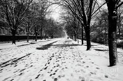 Photograph - Paris Walk by Miles Whittingham