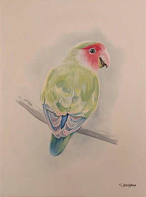 Painting - Parrot by Said Marie