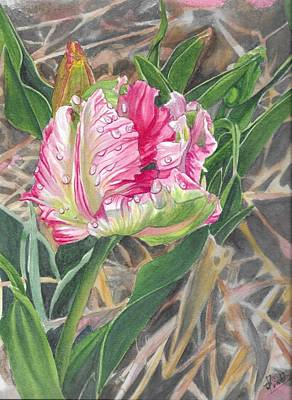 Painting - Parrot Tulip by Swati Singh