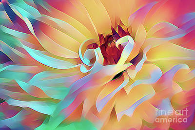Photograph - Party Time Dahlia Abstract by Anita Pollak