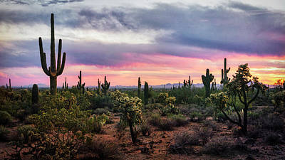 Photograph - Pastel Desert Skies At Sunset  by Saija Lehtonen