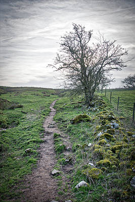 Photograph - Path Around Thorpe Cloud by Scott Lyons
