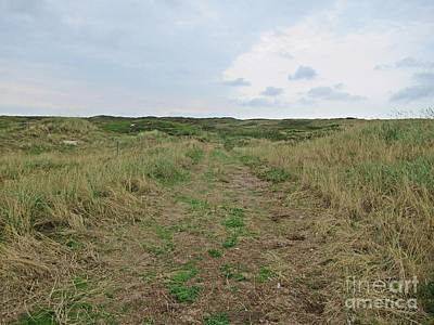 Photograph - Path Near De Mokbaai On Texel by Chani Demuijlder