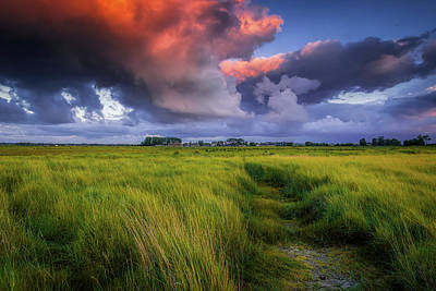 Just Desserts - Path to the Clouds by Andrew Soundarajan