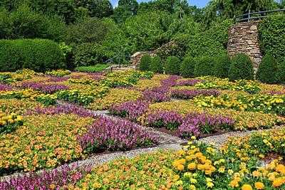 Photograph - Patterned Quilt Garden by Jill Lang