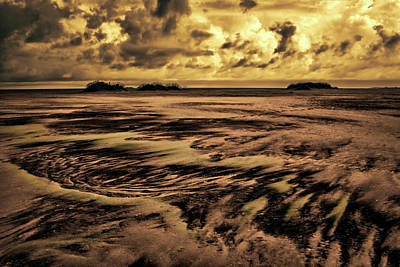 Photograph - Patterns In The Sand by Dan Carmichael