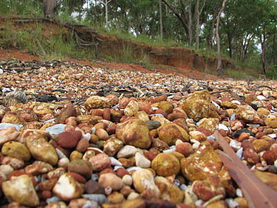 Landscape Wall Art - Photograph - Patterns Of Weipa Bauxite And Trees by Joan Stratton