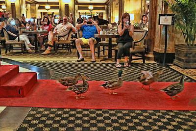 Photograph - Peabody Hotel Ducks # 4 - Memphis by Allen Beatty