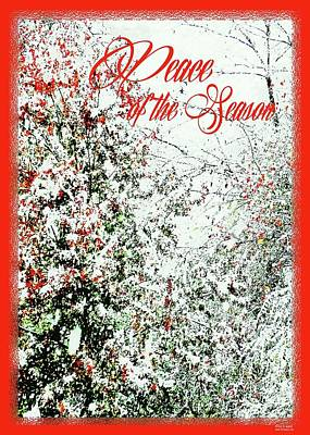 Digital Art - Peace Of The Season by Lizi Beard-Ward