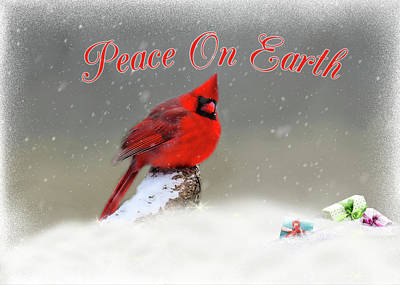 Photograph - Peace On Earth by Cathy Kovarik