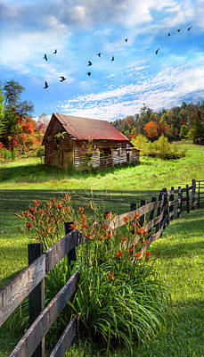 Photograph - Peaceful Country Morning by Debra and Dave Vanderlaan