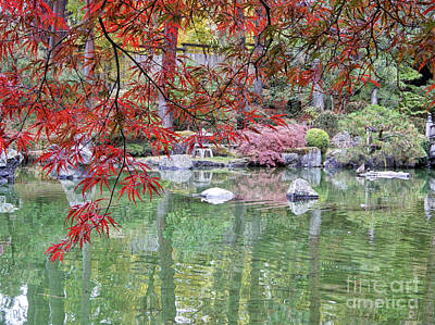 Photograph - Peaceful Fall Pond  by Carol Groenen