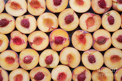 Photograph - Peach Pattern by Tim Gainey