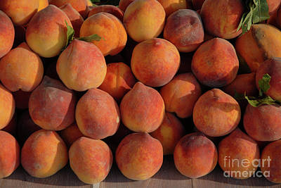 Wall Art - Photograph - Peaches, Peaches, Peaches by Josie Elias