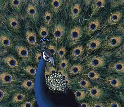 Wall Art - Digital Art - Peacock Digital Change1 by Joan Stratton