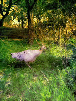 Digital Art - Peahen In A Forest Clearing by Jason Fink