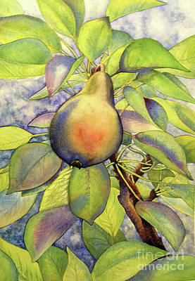 Pear Of Paradise Art Print