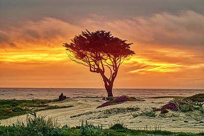 Photograph - Pebble Beach Sunset by Meta Gatschenberger