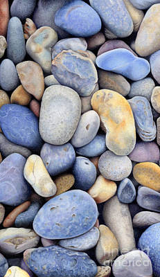 Painting - Pebbles by Tanya Tyrer