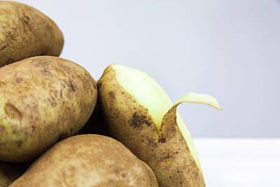 Photograph - Peeled Potato by Jeanette Fellows
