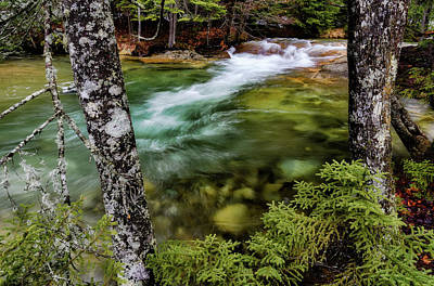 Photograph - Pemigewasset River, Basin Trail Nh by Michael Hubley