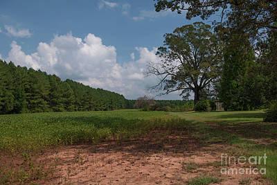 Photograph - Pendleton Farm Land by Dale Powell