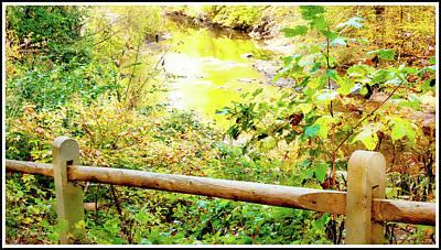 Photograph - Pennsylvania Stream In Early Autumn by A Gurmankin