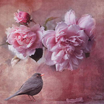 Florals Digital Art - Peonies and blackbird by Mihaela Pater